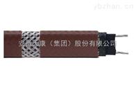 低温伴热电缆DWL-z中温屏蔽防护伴热电缆