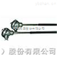 WZPNM-230耐磨热电阻
