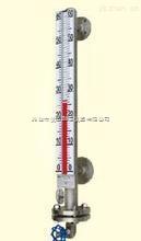 ZY-CUZ插入式磁性浮子式液位计/磁翻板液位计/磁翻柱液位计