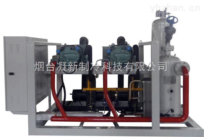 两并联低温螺杆制冷机组/螺杆并联机组/低温螺杆冷凝机组