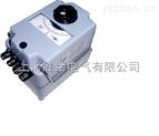 ZC11D手搖式兆歐表