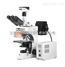 Motic麦克奥迪正置荧光显微镜