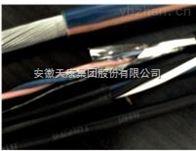 1*2*22AWGSWA安徽天康鋼絲鎧裝總線電纜