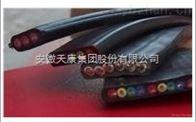 YVFBG 3*95 3*25安徽天康卷筒扁电缆