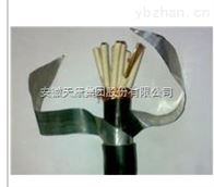 KYJVRP7*1.5安徽天康控制电缆