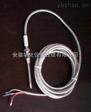 万源市铂热电阻温度传感器#国标PT100-B-2-M铂热电阻温度传感器现货