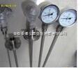 SBWZ 二线制热电阻温度变送器