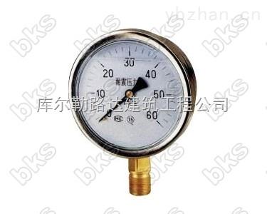 用于环境剧烈振动场所,可耐受介质脉动耐震压力表