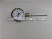 安徽天康防腐雙金屬溫度計