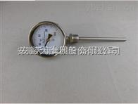WSS-411F安徽天康防腐双金属温度计
