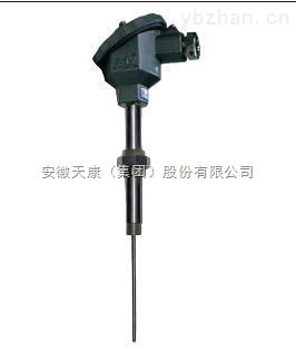 安徽天康生产防水式活络管接头工业用热电偶WRN-53A