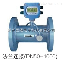 电池供电超声波工业水表 TDS-100W