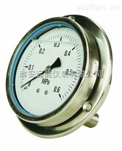 YTF-100HZ軸向不銹鋼壓力表