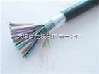 ZRDJYVP 5*2*0.5 6*2*1.0钢带铠装计算机电缆