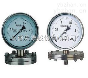 YMN隔膜式耐震压力表