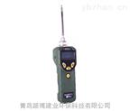 美国华瑞PGM-7300特种VOC检测仪