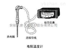 安徽热电阻温度计