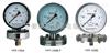 YPF係列膜片式壓力表