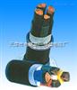 PTYV,PTYY22铁路隧道照明电缆,铁路隧道电力电缆