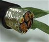 ZR-BPGVFP变频器阻燃屏蔽电缆