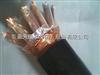 安徽天康KX-GS-VPVP1  7*2*1.0热电偶用补偿电缆